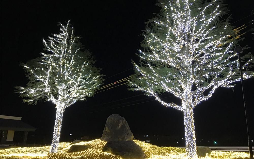LEDイルミネーション ストリングライト 設置画像2