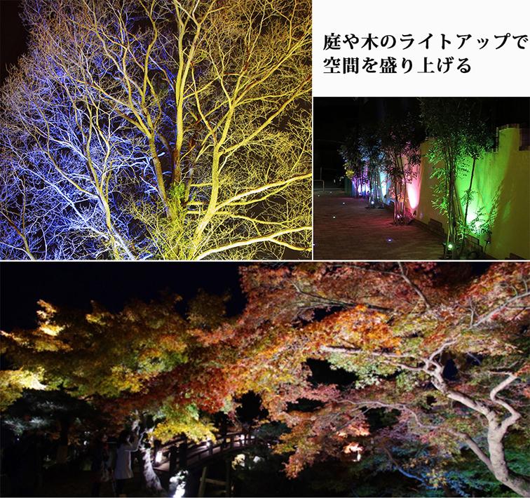 庭や木のライトアップで空間を盛り上げる