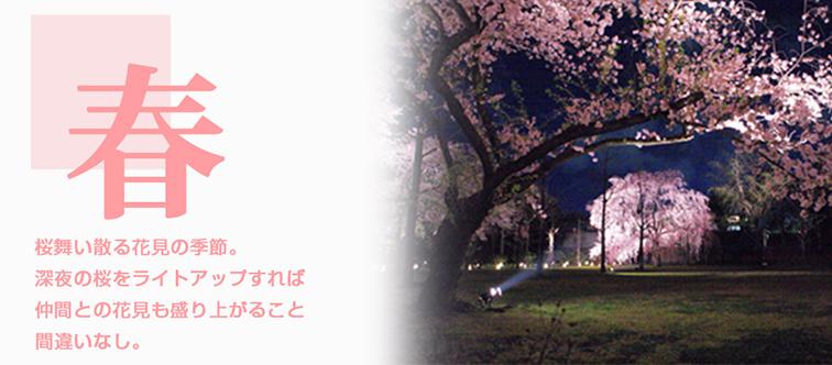 春 桜舞い散る花見の季節