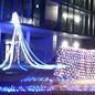 神奈川県横浜市桐蔭横浜大学へのイルミネーション業務用の施工例